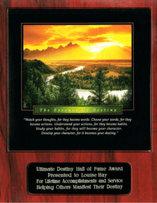 Ultimate Destiny Hall of Fame Awards - Strategic Marketecture