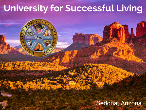 University for Successful Living - Strategic Marketecture