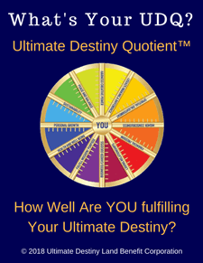 What's Your UDQ - Strategic Marketecture