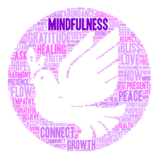 Ultimate Mindfulness Logo - Acres of Diamonds in the Rough